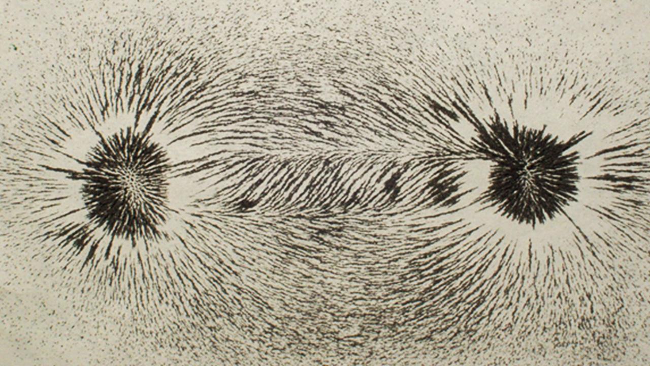 بررسی زنجیره نانوذرات تشکیل شده در برخی باکتریها