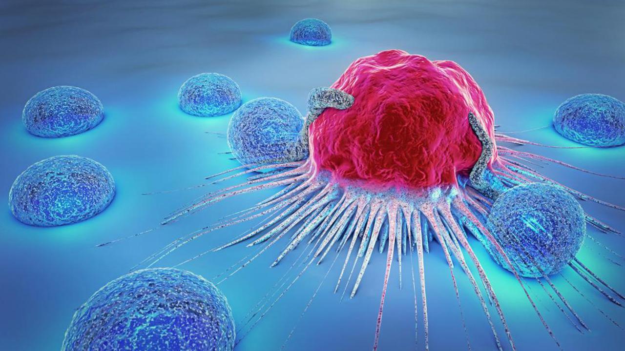 ارائه مدل سهبعدی سلول سرطانی برای مطالعات دارویی
