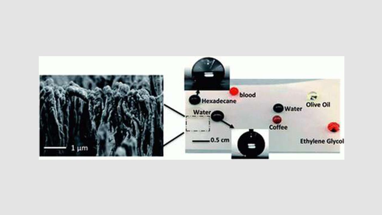 نانوساختارهای قارچی شکل، عامل بروز رفتار سیالگریزی