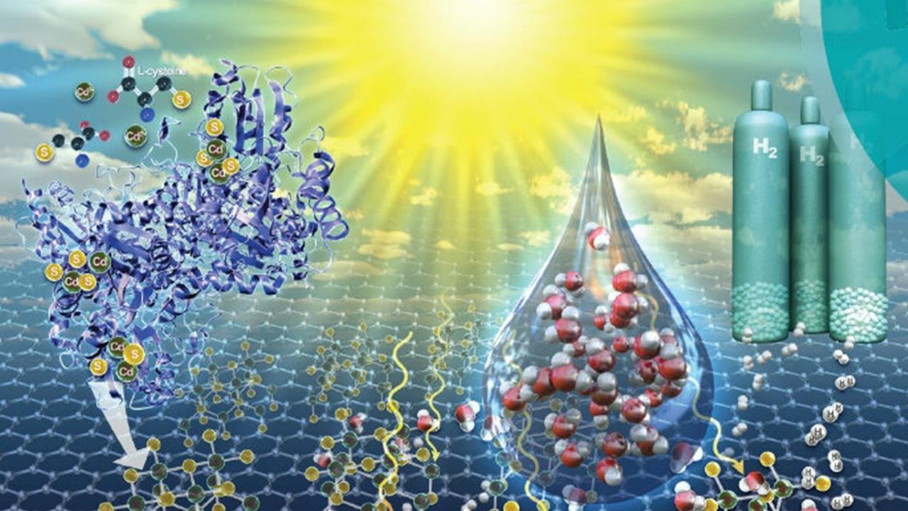 روشی سبز و ارزان برای تولید نانوکاتالیست
