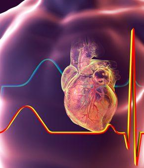 ساخت نمونه اولیه از دستگاه تشخیص سریع حمله قلبی با «آزمایشگاه روی تراشه» ایرانی