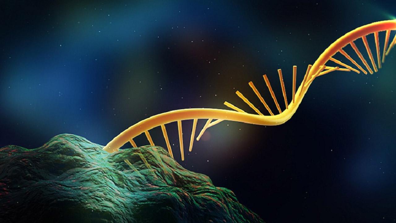 تشکیل پیشگامی تحقیقات نانو با توافق بخش خصوصی و دانشگاه هاروارد