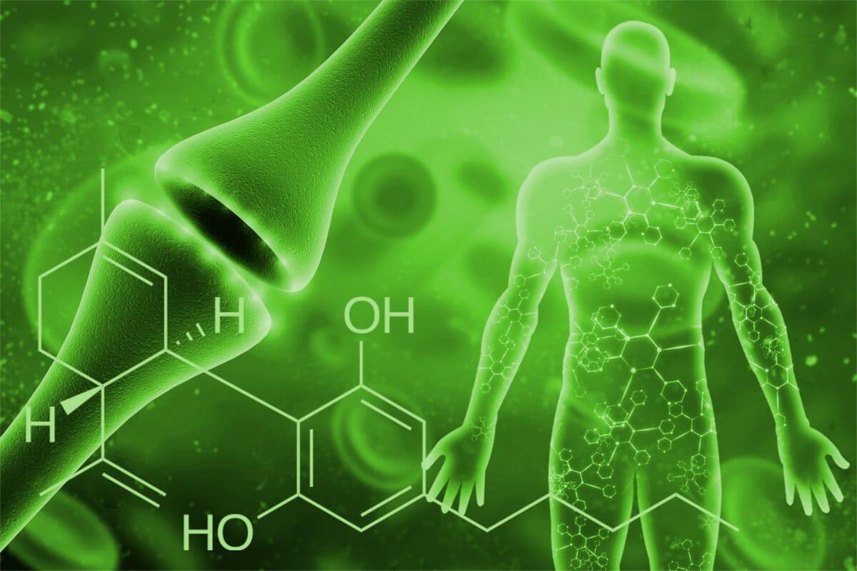 توسعه محصولات حاوی کانابینوئید با نانوذرات و نانوالیاف