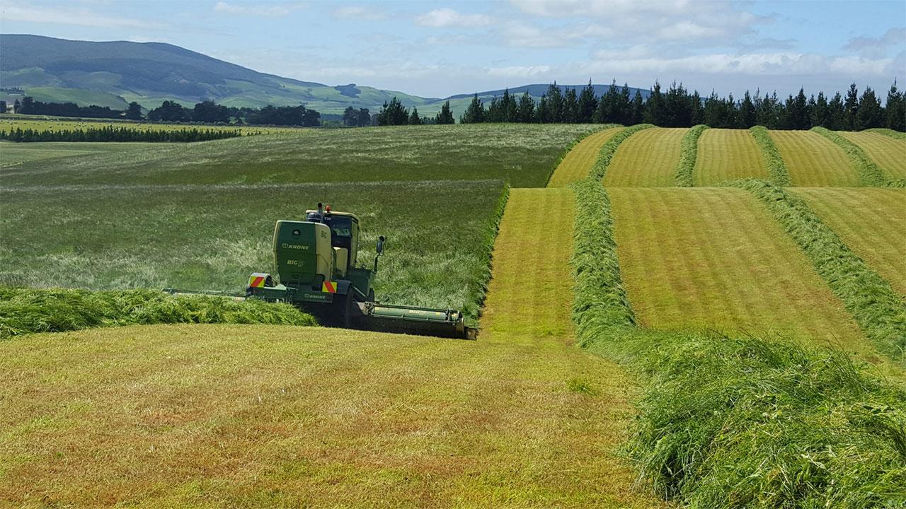 سرمایهگذاری دولت نیوزلند برای افزایش بهرهوری کشاورزی با نانوپوشش