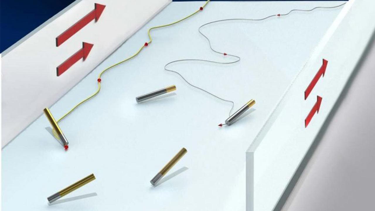 الهام از طبیعت برای ساخت نانوموتور شناگر